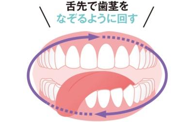 舌先で歯茎をなぞるように回す