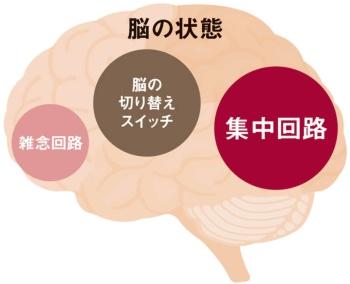 気付きの脳の状態