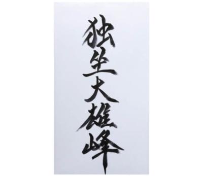 川野さんからの言葉  独坐大雄峰(どくざだいゆうほう)